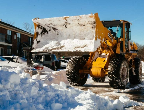 Snow Removal Seasonal Fixed Rates Win by an Avalanche