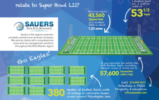 Sauers and the Super Bowl - snow removal services